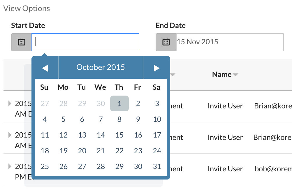 Audit Report Date Picker